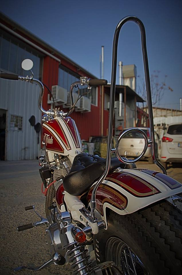 Harley Davidson  - 100