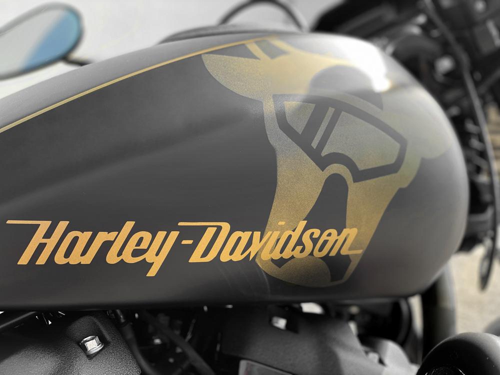 Harley Davidson  - 15